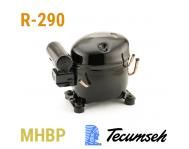 Tecumseh  (R 290,  MHBP - HBP)